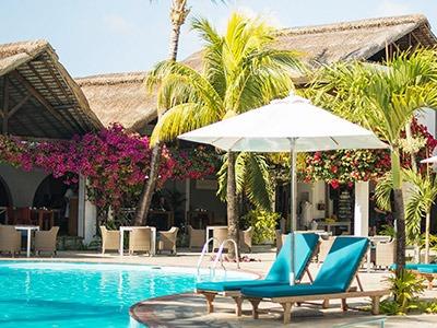 veranda-palmar1